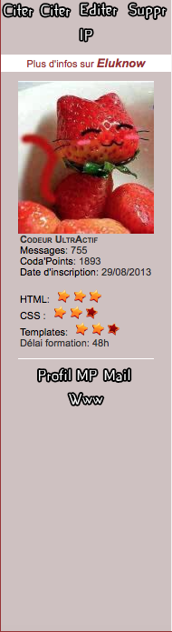 Formation HTML/CSS - Page 2 Captur34