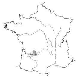 2.1.4. L'exemple du bassin de BRIVE (Corrèze). Bassin11