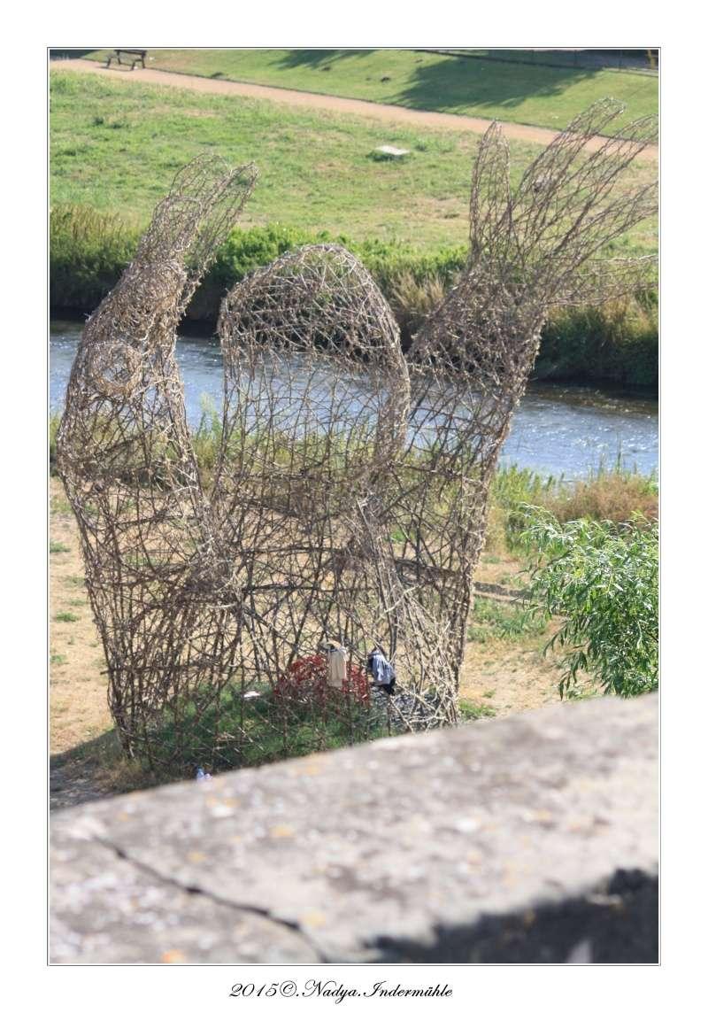 Carcassonne, et sa cité - Page 3 Cadre108