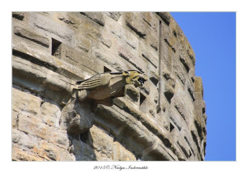 Carcassonne, et sa cité - Page 3 Cadre117