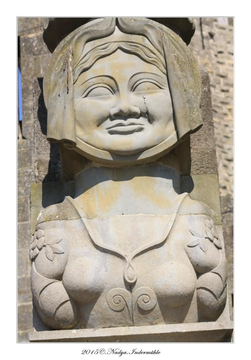 Carcassonne, et sa cité - Page 3 Cadre119