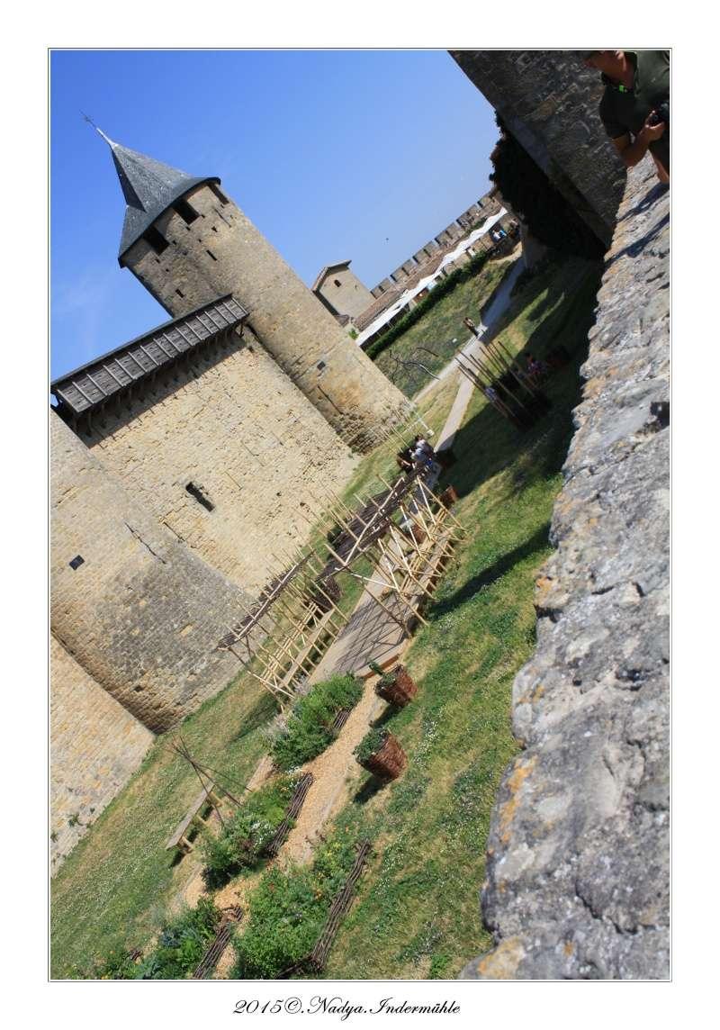 Carcassonne, et sa cité - Page 2 Cadre336