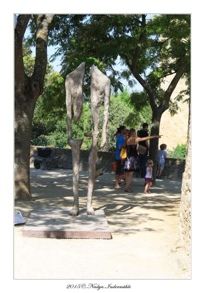 Carcassonne, et sa cité - Page 2 Cadre337