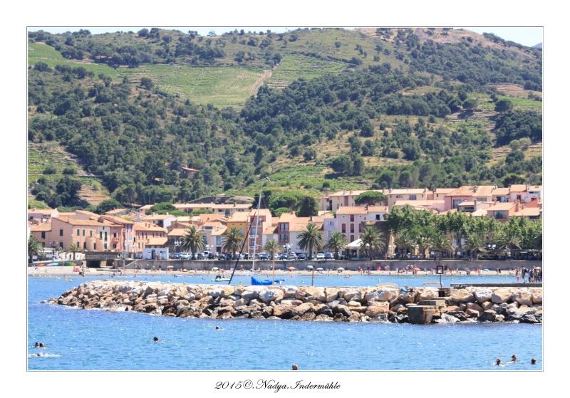 Collioure, petit coin de paradis - Page 3 Cadre348