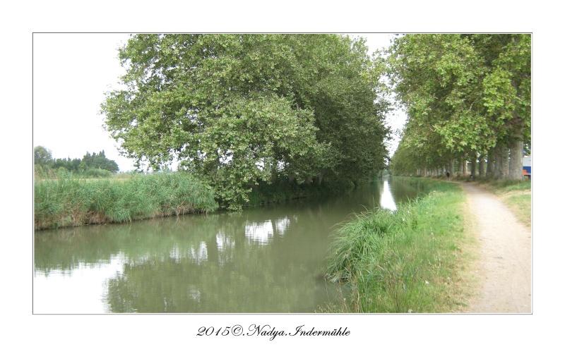 Narbonne, et son canal de la Robine - Page 2 Cadre408