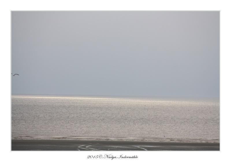 Fort Mahon Plage, et ses plages Cadre498