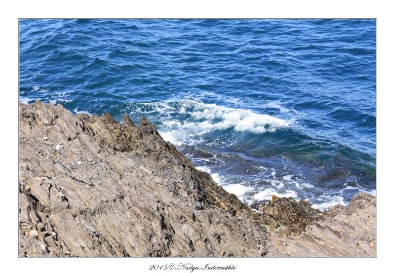 Collioure, petit coin de paradis - Page 2 Cadre515