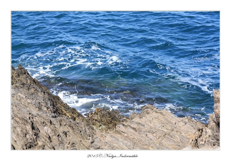 Collioure, petit coin de paradis - Page 2 Cadre516