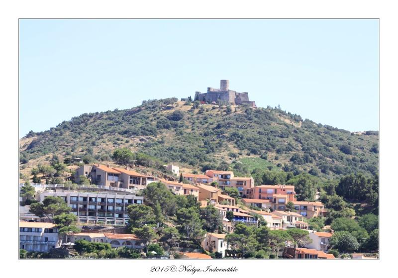 Collioure, petit coin de paradis - Page 2 Cadre517