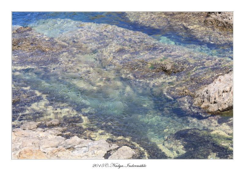 Collioure, petit coin de paradis - Page 2 Cadre519