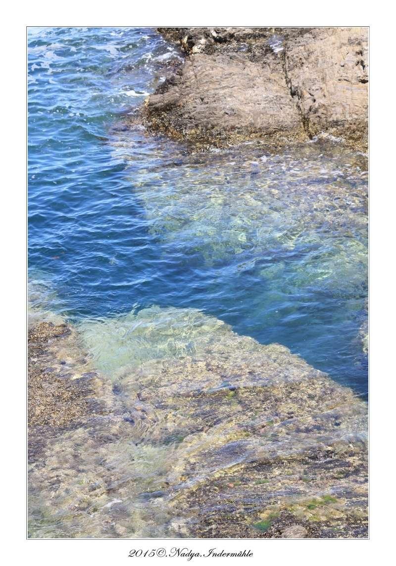 Collioure, petit coin de paradis - Page 2 Cadre520