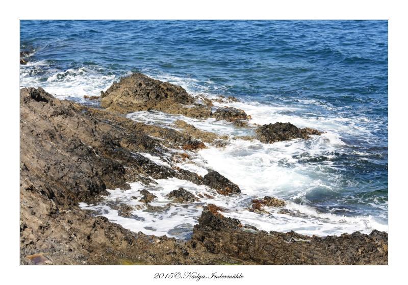 Collioure, petit coin de paradis - Page 2 Cadre523