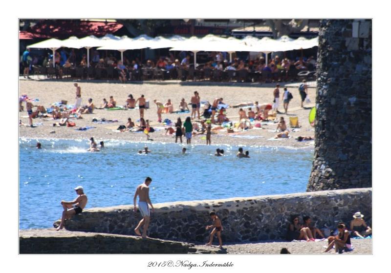 Collioure, petit coin de paradis - Page 2 Cadre524