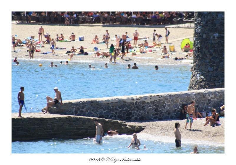 Collioure, petit coin de paradis - Page 2 Cadre525
