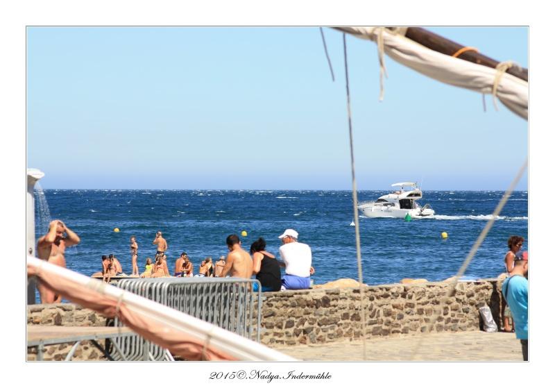 Collioure, petit coin de paradis - Page 4 Cadrer21