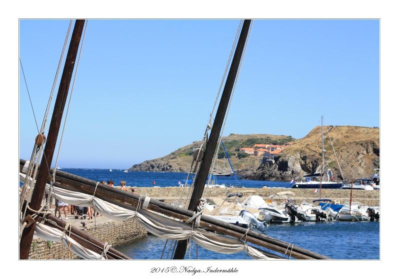 Collioure, petit coin de paradis - Page 3 Cadrer24