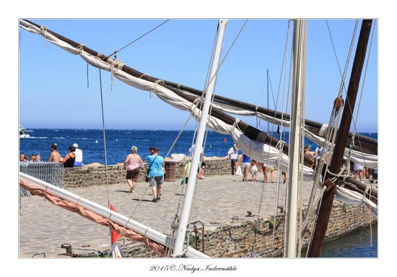 Collioure, petit coin de paradis - Page 3 Cadrer25