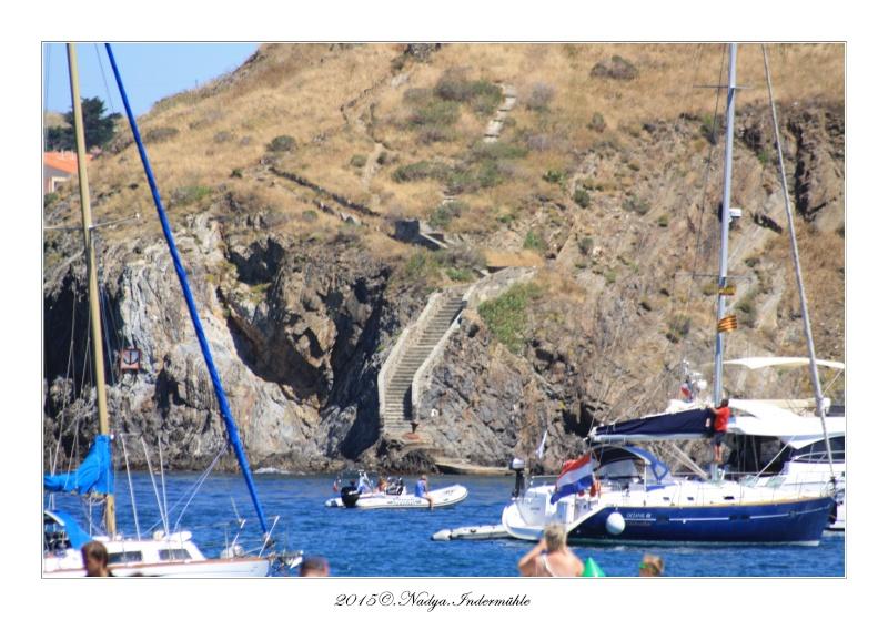 Collioure, petit coin de paradis - Page 3 Cadrer33