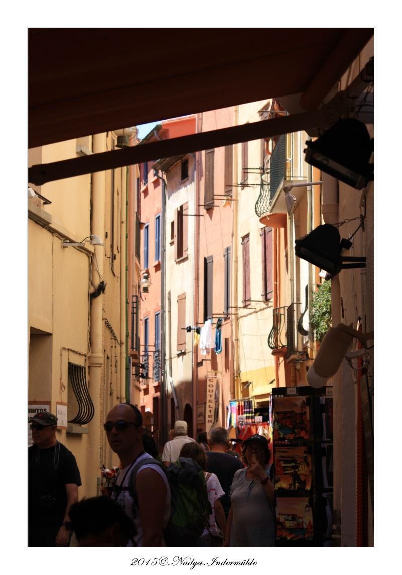 Collioure, petit coin de paradis - Page 4 Cadrer38