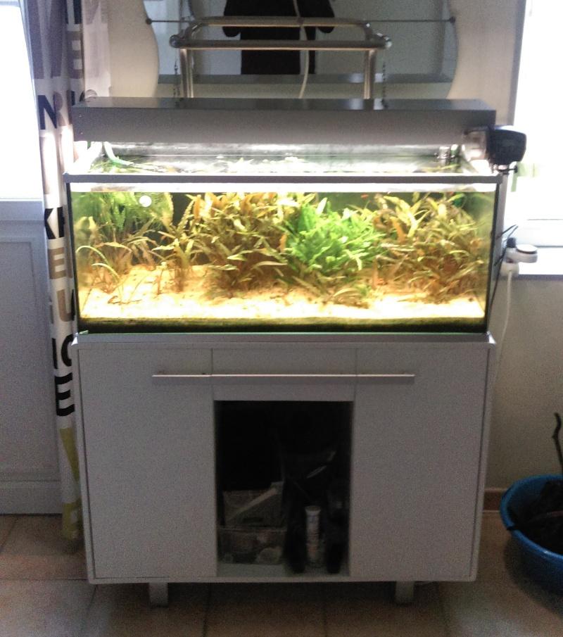First 60-->120 litres DIY  - Page 2 Aqua110