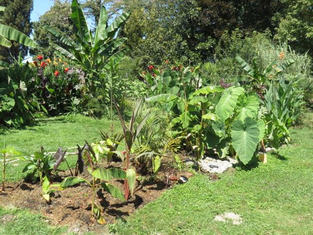 jardin gersois 2019 Img_0618