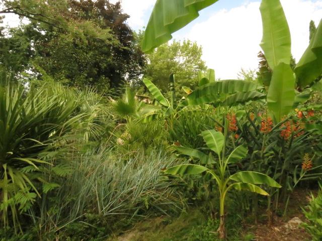 jardin gersois 2019 Img_0626