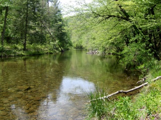 Cherokee Creek Citico10