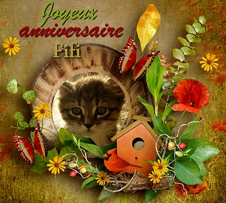 Joyeux anniversaire Fifi 56931510