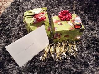 Père-Noël Surprise 2015 - Page 3 20151134