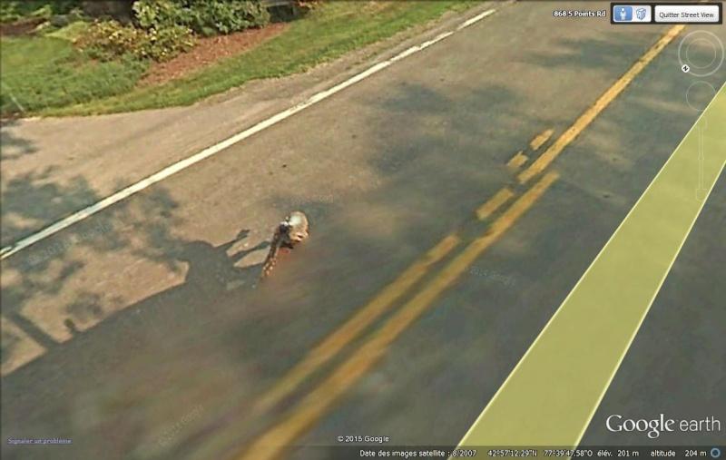 Endroits insolites en Street View Faon_210