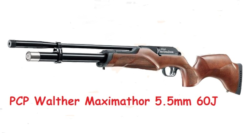 Plombs Walther Maximathor extra lourds 1.37 grammes en 5.5 mm Walthe10