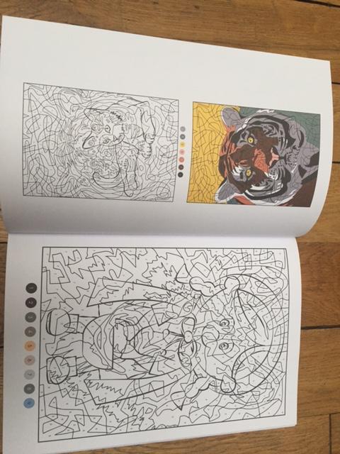 Vice versa : un nouveau magazine de coloriage mystère Img_7628