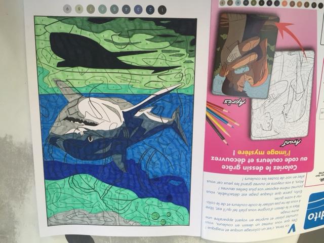 Vice versa : un nouveau magazine de coloriage mystère Img_7636