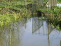 Frayère à brochets de Pont-à-Brac Imgp1113