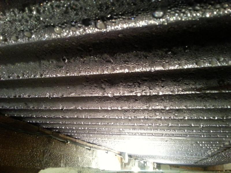 Humidité sur toit du poulailler 20151110