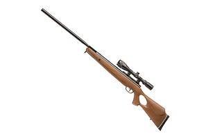 Спортивная стрельба из пневмотического оружия 310