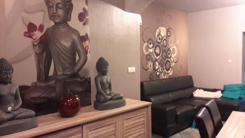 Relooking salon -salle à manger 20151111