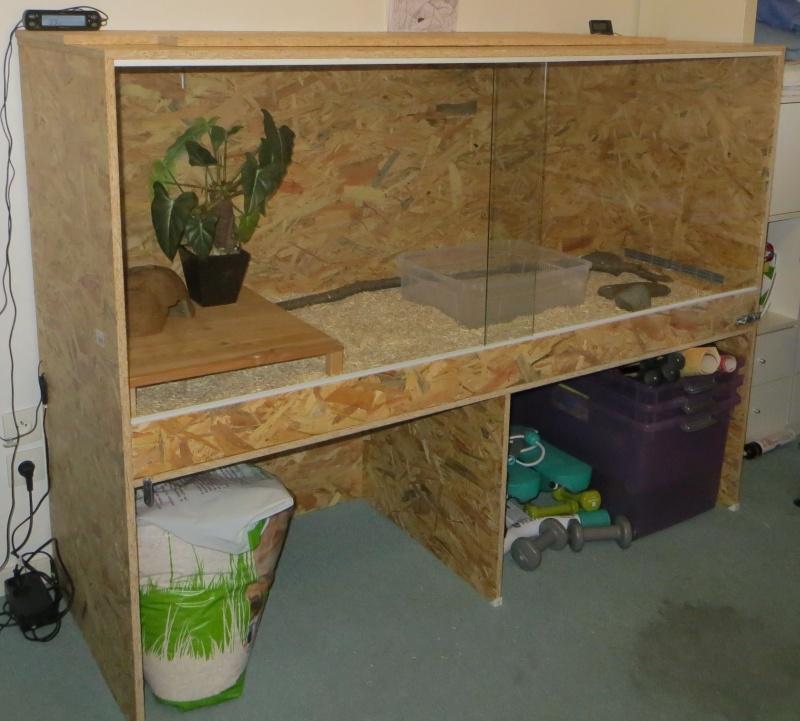 terrarium maison pour boa. Black Bedroom Furniture Sets. Home Design Ideas