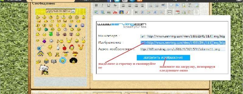 Как добавить картинку или фото в сообщение Ed210