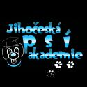 Jihočeská psí akademie