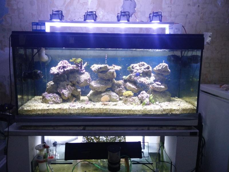 bacs  eau de mer ludichael Img_2011