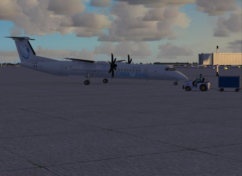 Rapatriement Person'ailes depuis Reno Cara_f12