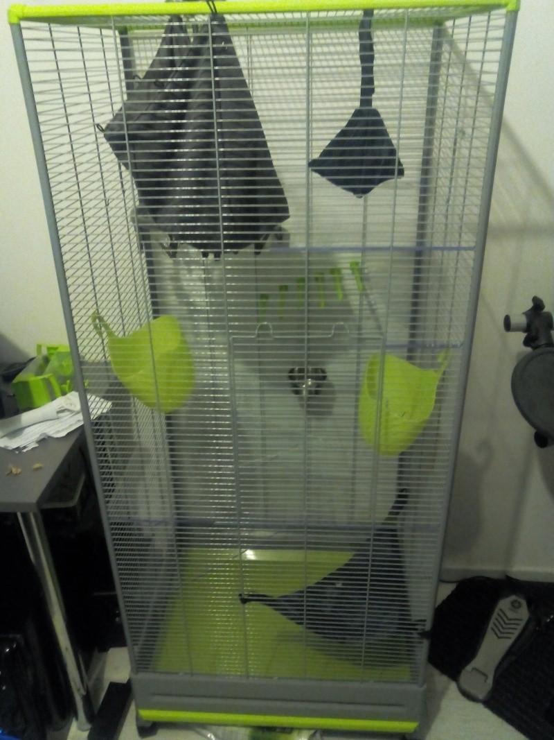 Question pour la création d'une cage Img_2010