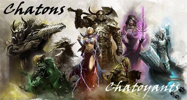 Forum des Chatons Chatoyants