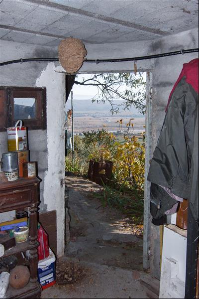 site occupé, en nichoir, et nid dans une cave Cave_110