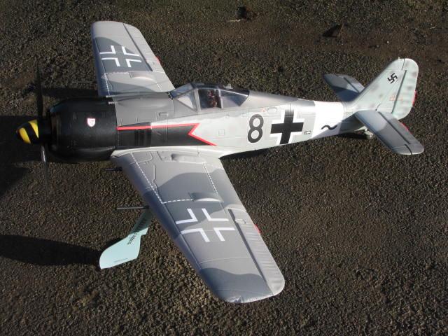FW-190 FMS 1400mm, 2ème chance... Img_6420