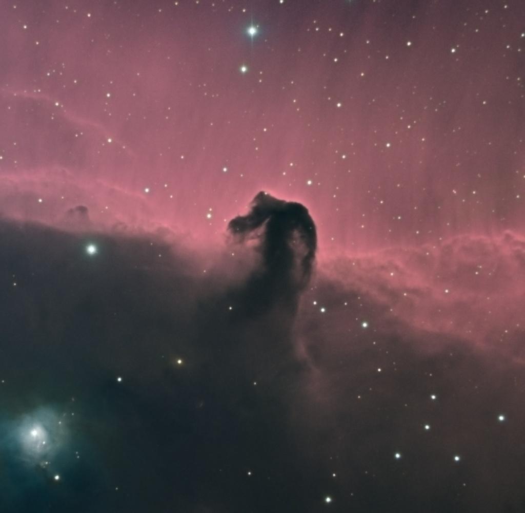 Nébuleuse de la Tête de Cheval Horse_10