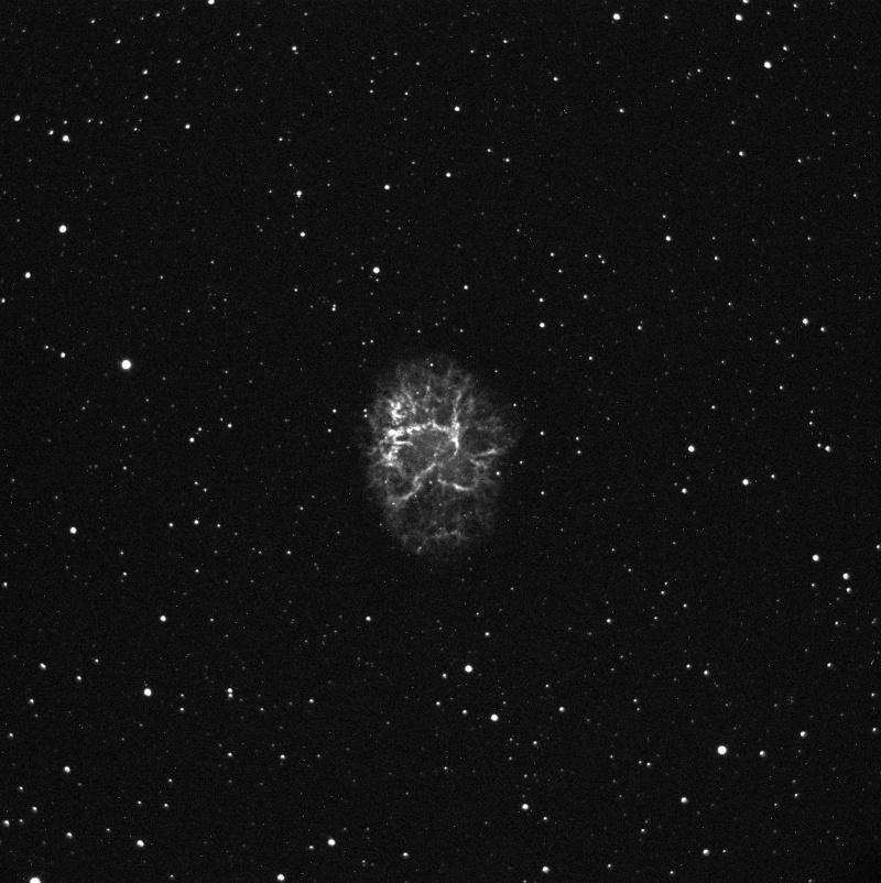 De l'APN vers la CCD, Nebuleuse du Crabe, derrière un C11 Img_0710