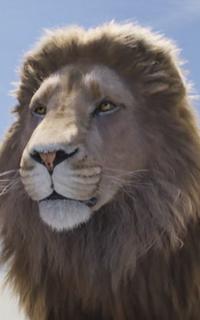 Narnia Publicités Avatar10