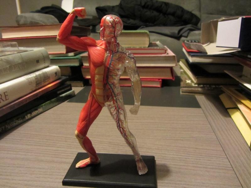 Figurines de référence Img_0713